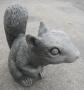 """6"""" Squirrel"""