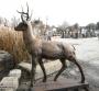 Lg Deer