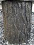 Log Pedestal
