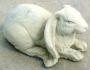 Lying Long Eared Rabbit