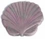 Sea Shell S.S.