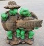 Shello Turtles