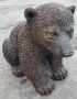 Siiting Bear Cub
